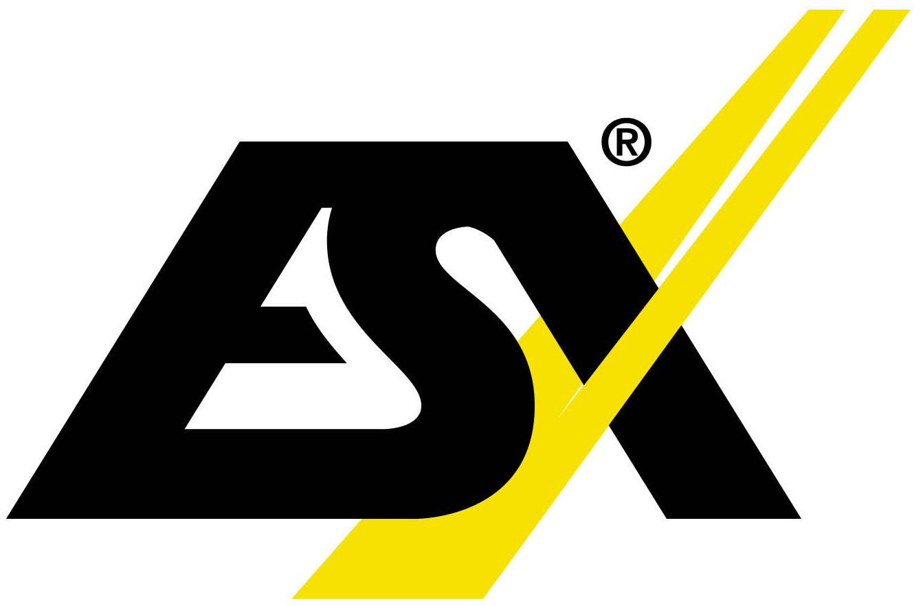 ESX Navigation Lautsprecher DSP Endstufen Aktiv Subwoofer